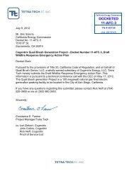 Draft Wildfire Response Emergency Action Plan - California Energy ...