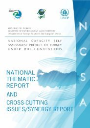 NATIONAL THEMATIC REPORT and CROSS CUTTING ISSUES ...