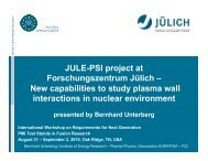 JULE-PSI project at Forschungszentrum Jülich - Oak Ridge National ...
