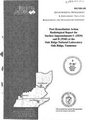 Post-Remediation Action RAdiological Report for Surface ...