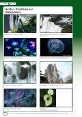 Avatar - Parallelen zur Wirklichkeit - OroVerde - Seite 2