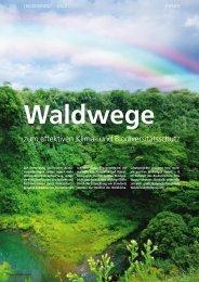 Waldwege zum effektiven Klima- und Biodiversitätsschutz - OroVerde