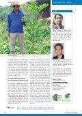 Waldwege zum effektiven Klima- und Biodiversitätsschutz - OroVerde - Seite 6
