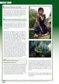 Fantasiereise auf einer Kakaoplantage - OroVerde - Seite 2