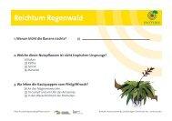 Reichtum Regenwald - OroVerde
