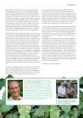 Hüter der Wälder - OroVerde - Seite 5