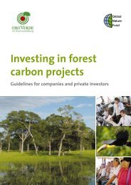Investing in forest carbon projects - Side Events - United Nations ...