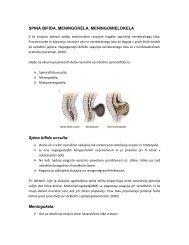 Spina bifida, meningokela, meningomielokela - Ortopedska klinika ...