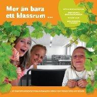Mer än bara ett klassrum … - Örebro universitet