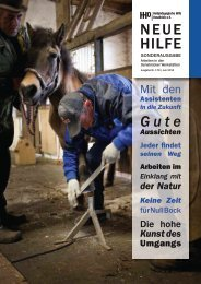 Jetzt als PDF downloaden (4,37 MB) - Heilpädagogischen Hilfe ...