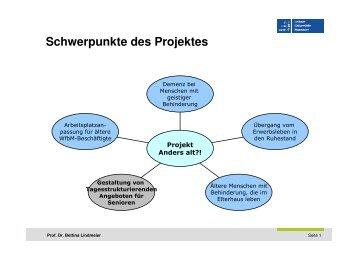 Schwerpunkte des Projektes