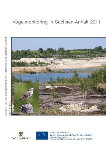 Vogelmonitoring in Sachsen-Anhalt 2011 - Ornithologenverband ...