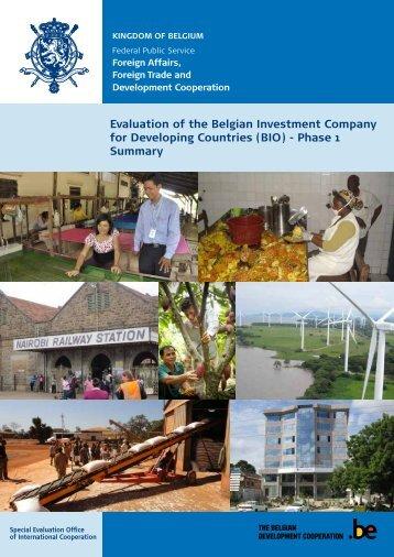 Summary report (PDF, 814.99 Kb) - Belgium