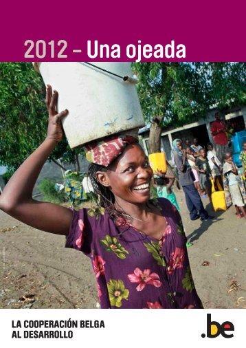 DGD Annual report 2012 - Summary (Spanish) - Belgium