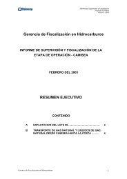 resumen ejecutivo febrero - 2005 - Organismo Supervisor de la ...