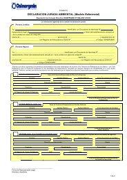 DECLARACION JURADA AMBIENTAL (Modelo Referencial)