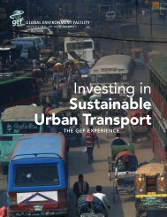 Investing in Sustainable Urban Transport