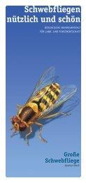 Schwebfliegen nützlich und schön - Osternaha