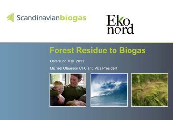 Forest Residue to Biogas