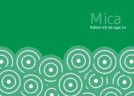 Micabroschyr