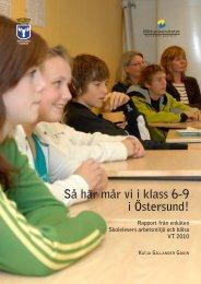 Rapport från enkäten Skolelevers arbetsmiljö och hälsa vt