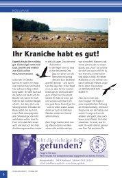 Ihr Kraniche habt es gut.pdf - Ostseereporter - Marius Jaster