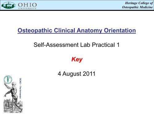 Osteopathic Clinical Anatomy Orientation Self-Assessment Lab