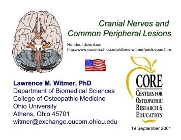 Cranial Nerves and Common Peripheral Lesions - Ohio University ...