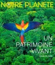 L'avenir des forêts - UNEP
