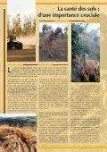 pour les jeunes - UNEP - Page 4