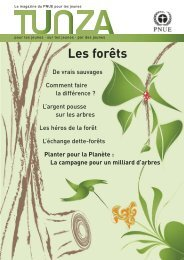 Les forêts - Our Planet