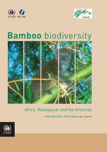 Bamboo 2 cover v7 - Our Planet