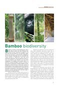 Bamboo 2 cover v7 - Our Planet - Page 7