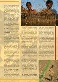 Tunza Vol. 9.2: Soil - the forgotten element - UNEP - Page 5