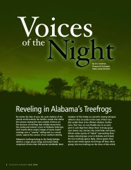 Voices Night Of The - Alabama Department of Conservation and ...