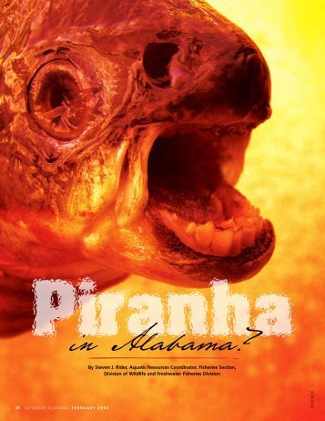 Piranha in Alabama? - Alabama Department of Conservation and ...