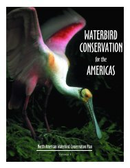 Waterbird Conservation for the Americas - Lower Mississippi Valley ...