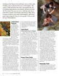 Climbing Alabama - Page 3