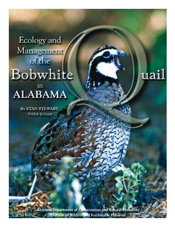 Ecology and Management of the Bobwhite Quail in Alabama