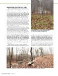 Managing Our State Parks - Alabama Department of Conservation ... - Page 3