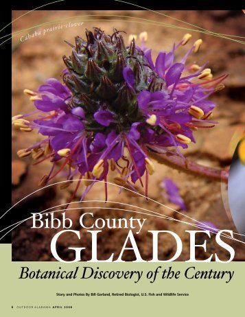 Bibb County Glades - Alabama Department of Conservation and ...