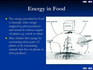 Energy in Food - Oxford Journals