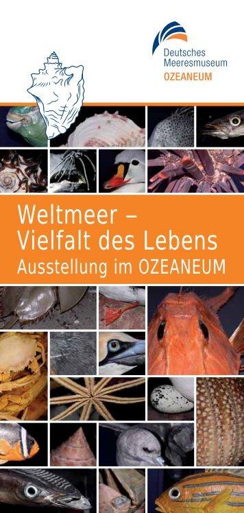 Weitere Informationen zur Ausstellung - Ozeaneum