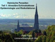 Präsentation P. Kern, Ulm