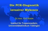 Präsentation R. Bialek, Tübingen