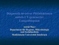 Diagnostik von Pilzinfektionen an Hand CT-gesteuerter ...