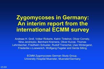 ECMM Survey