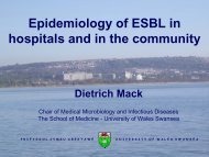 E. coli - Paul Ehrlich Gesellschaft