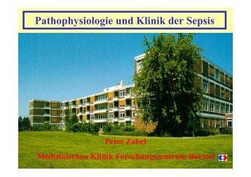 Präsentation P. Zabel