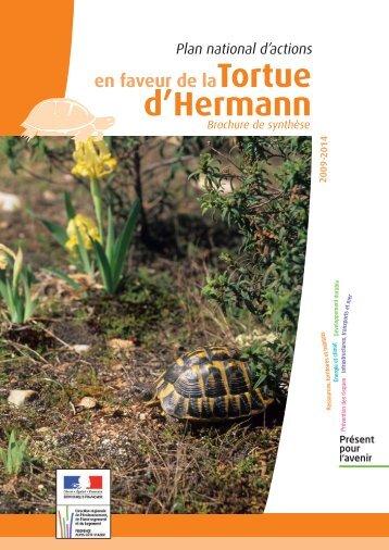 Brochure de synthèse - DREAL Paca